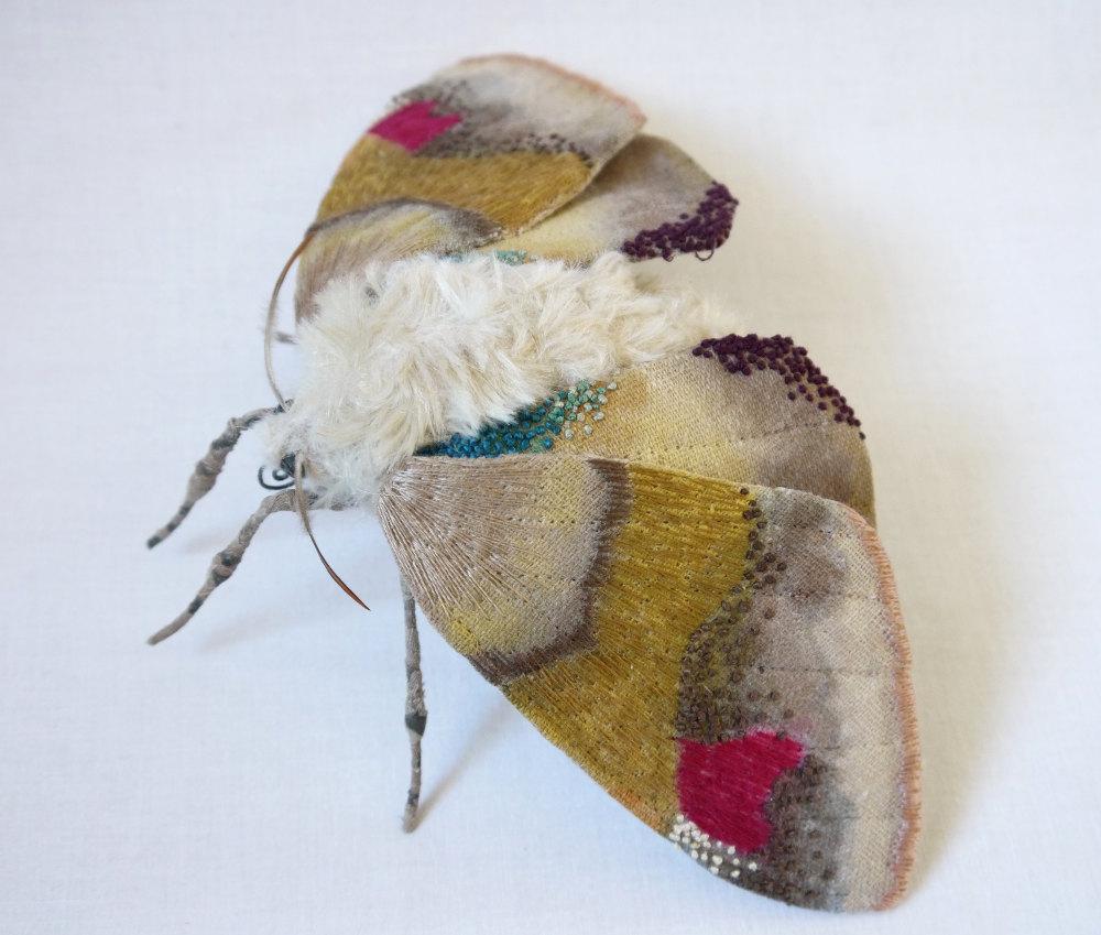 Papillon de nuit Yumi Okita