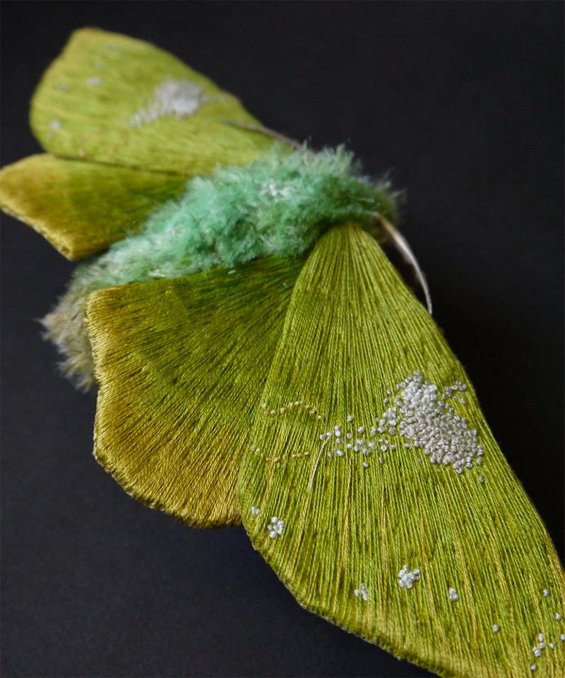 Papillon Yumi Okita
